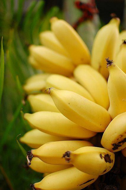 Banany doskonale wpływają na układ nerwowy.