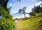 Mauritius: pięć super miejsc, które musisz tam zobaczyć