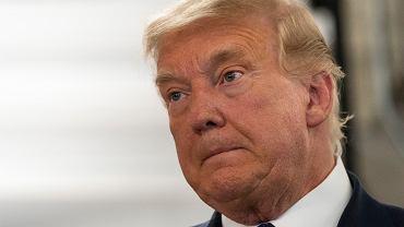 Wybory w USA. Trump chce, by przestano liczyć głosy. Greta Thunberg: Wyluzuj, Donald, wyluzuj!