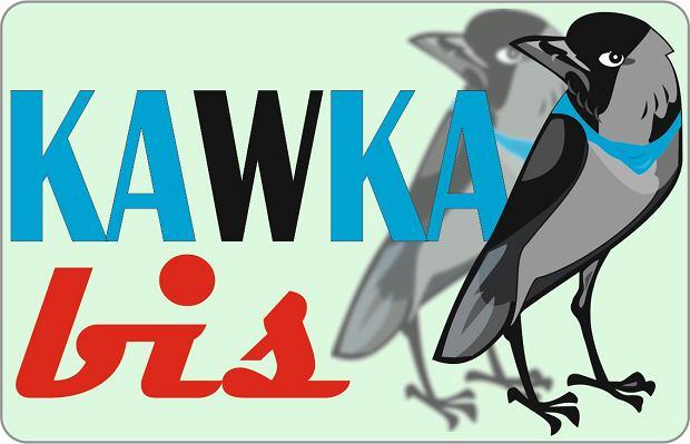 Logo programu Kawka Bis
