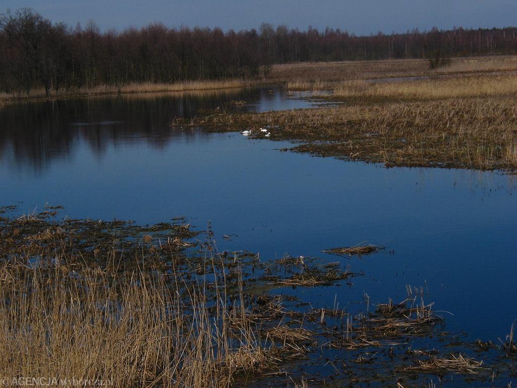Dlaczego warto zwiedzić Mońki i bliską okolicę?