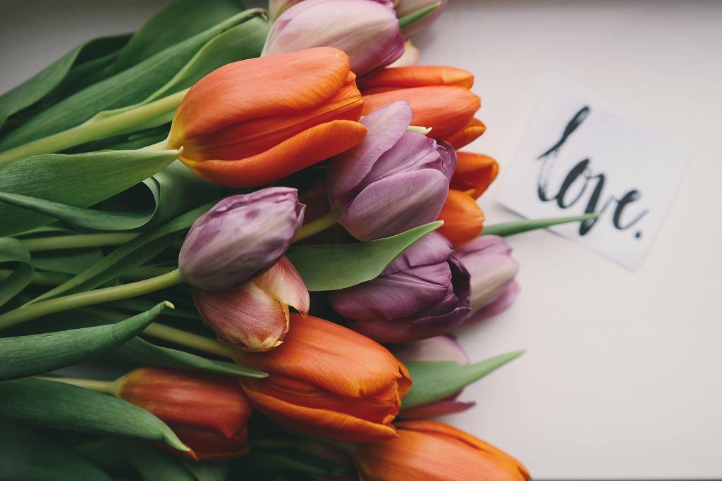a2951eb805 Życzenia na Dzień Kobiet 2019. Gotowe wierszyki