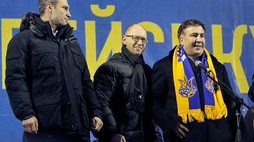 Witalij Kliczko, Arsenij Jaceniuk, Michaił Sakaszwili