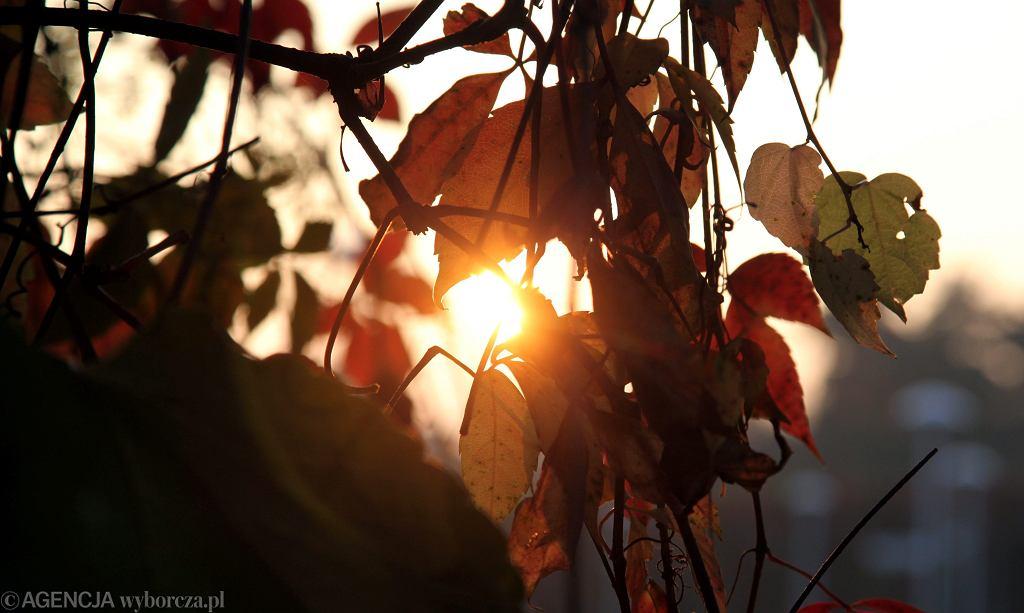 Jesienna pogoda