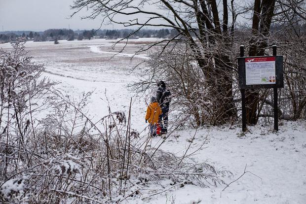 Zdjęcie numer 32 w galerii - Zima w Krakowie - śnieg przykrył ulice, domy, parki [GALERIA]