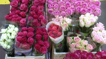Giełda kwiatów i roślin Flora Holland