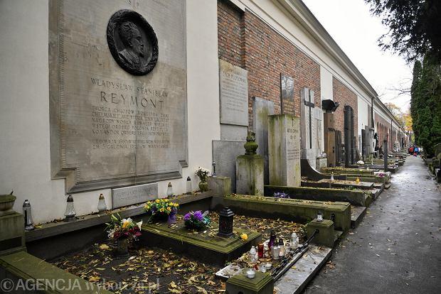 Zdjęcie numer 2 w galerii - Wszystkich Świętych. Tu spoczywa Władysław Reymont i Wojciech Młynarski. Groby w Alei Zasłużonych na Starych Powązkach [ZDJĘCIA]