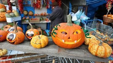 Dynie przygotowane na Halloween