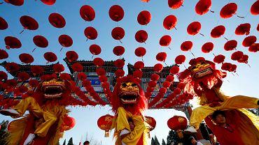 Trwają już pierwsze przygotowania do hucznych obchodów chińskiego Nowego Roku. Sami Chińczycy nie są jednak pewni, jakie zwierzę będzie jego patronem