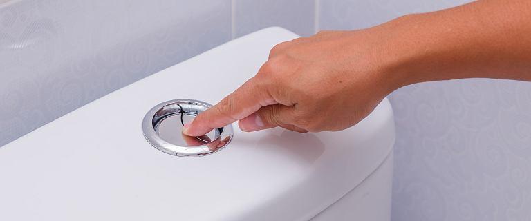 Dlaczego zaraz po powrocie z urlopu należy spuszczać wodę w toalecie? Ważny powód
