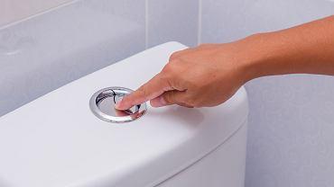 Dlaczego po powrocie z wyjazdów od razu należy spuszczać wodę w toalecie?