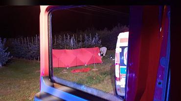16-letni motocyklista potrącił pieszego i uderzył w drzewo w miejscowości Wilcze Piętki. Nie żyją dwie osoby.