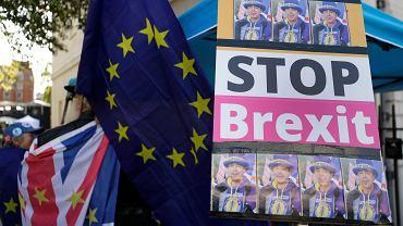 Manifestacja ws. brexitu - zdjęcie ilustracyjne