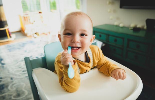 Rozszerzanie diety dziecka - gotowe dania dla niemowląt HiPP BIO