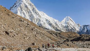 W Himalajach coraz więcej roślin. Prawdopodobna przyczyna to zmiany klimatu