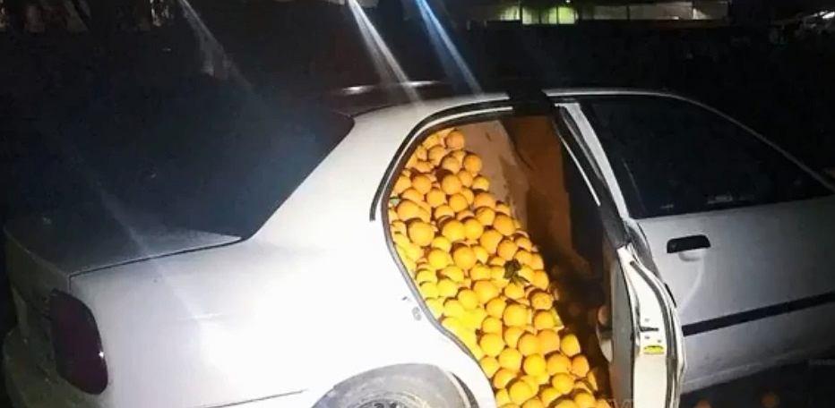 Ukradli tony pomarańczy i wieźli je w osobówkach