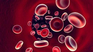 Pletyzmografia bada przepływ krwi w naczyniach obwodowych