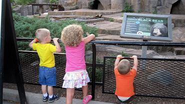 Jak przygotować dziecko do wizyty w zoo?