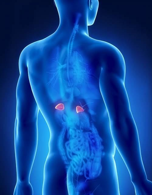 Niewłaściwe stężenie kortyzolu to najczęstsza przyczyna rozwoju przełomu nadnerczy