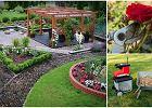 Nożyce, sekatory, rozdrabniarki do gałęzi - must have w każdym ogrodzie