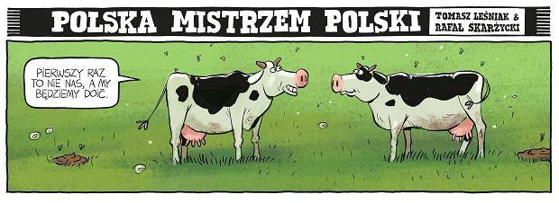 Zdjęcie numer 42 w galerii - Polska mistrzem Polski