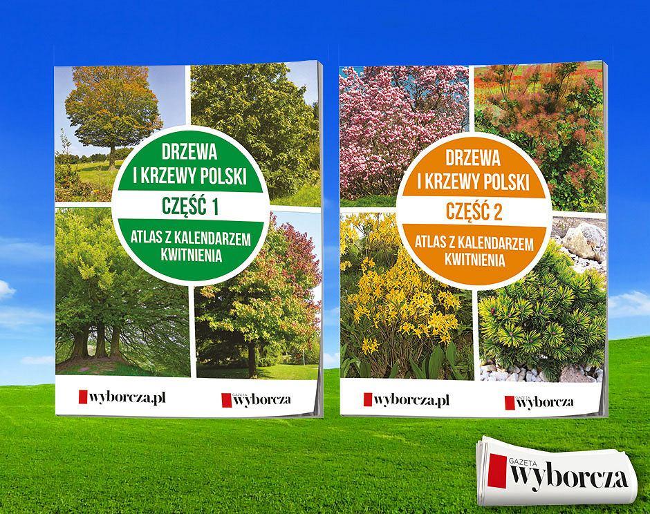 Drzewa i Krzewy Polski