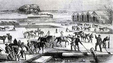 Pozyskiwanie lodu z zamarzniętego jeziora w stanie Massachusetts we wczesnych latach 50. XIX w. Na rycinie widać pociąg, którym lód jechał na Południe (źródło ryciny: Gleason's Drawing Room Companion, 1852)