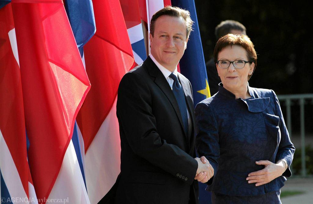 Premier Wielkiej Brytanii David Cameron i prezes Rady Ministrów Ewa Kopacz podczas oficjalnego powitania, przed Pałacem na Wodzie w Łazienkach Królewskich w Warszawie, 29.05.2015