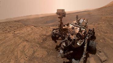Selfie z Marsa