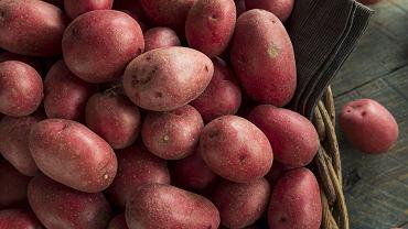 Czerwone ziemniaki - jak smakują i do czego je wykorzystać? [PRZEPIS]