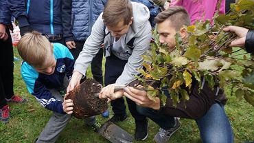Inauguracja 15. edycji Święta Drzewa w Bielsku-Białej