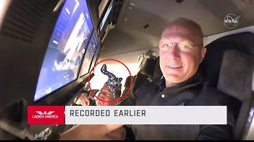 NASA wysłała pluszowego dinozaura w kosmos. Poleciał razem z astronautami w Crew Dragon