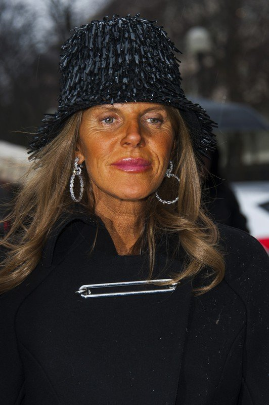 Anna Dello Russo arriving the Balenciaga's Fall-Winter 2014-2015 Ready-to-Wear collection show held at L'Observatoire in Paris, France, on february 27, 2014. Photo by Nicolas Genin/ABACAPRESS.COM