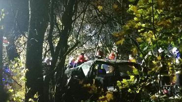 Szalejów Dolny. Śmiertelny wypadek, 18.10.2019. Zginęło dwóch nastolatków