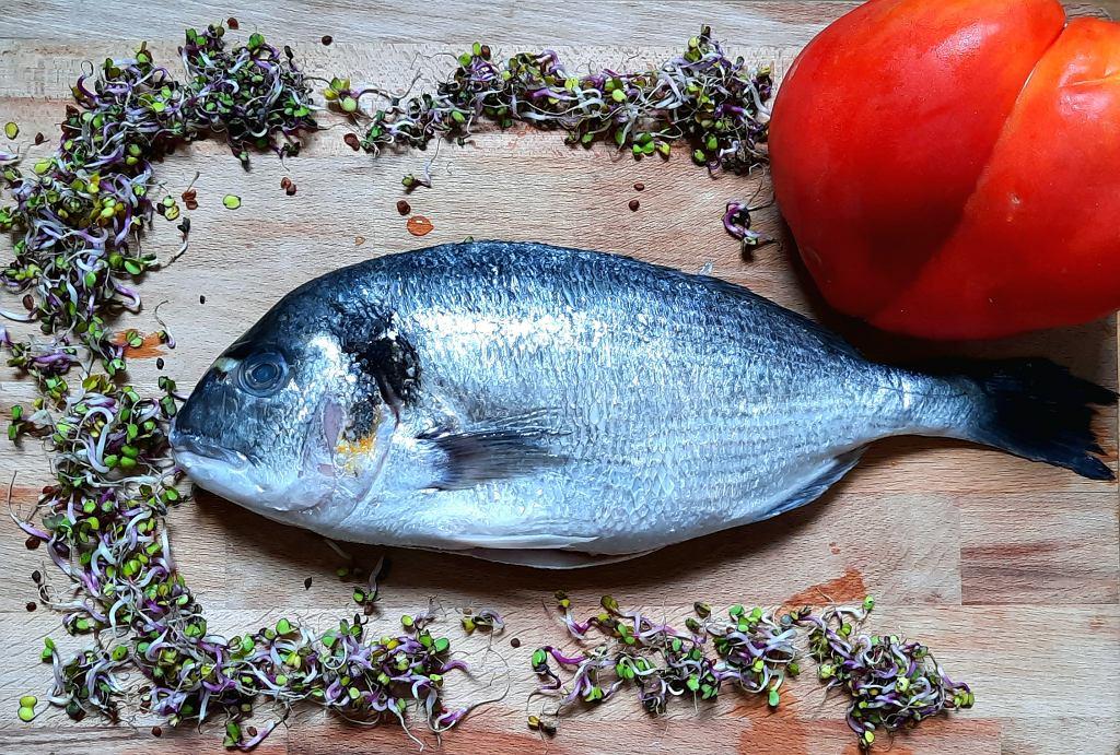 Ryby z Portside