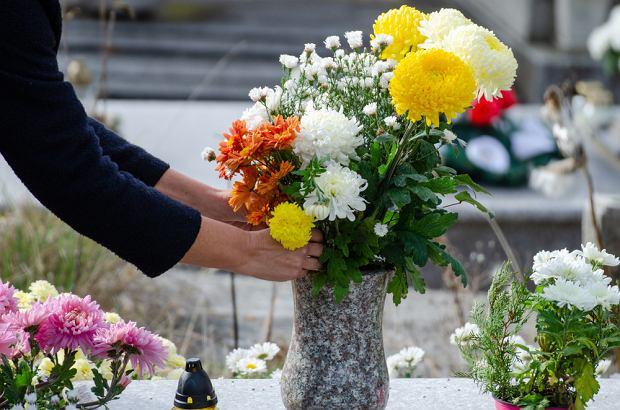 Cięte kwiaty w wazonie na Wszystkich Świętych. Zdjęcie ilustracyjne