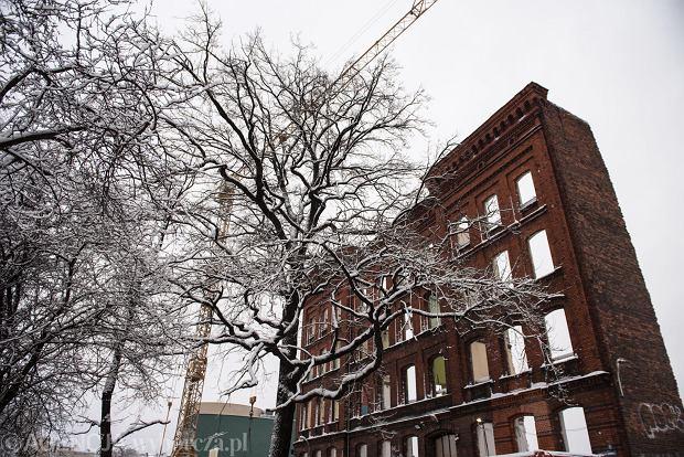 Zdjęcie numer 31 w galerii - Wrocław pod śniegiem. Zobacz zimowe zdjęcia z centrum miasta [FOTO]