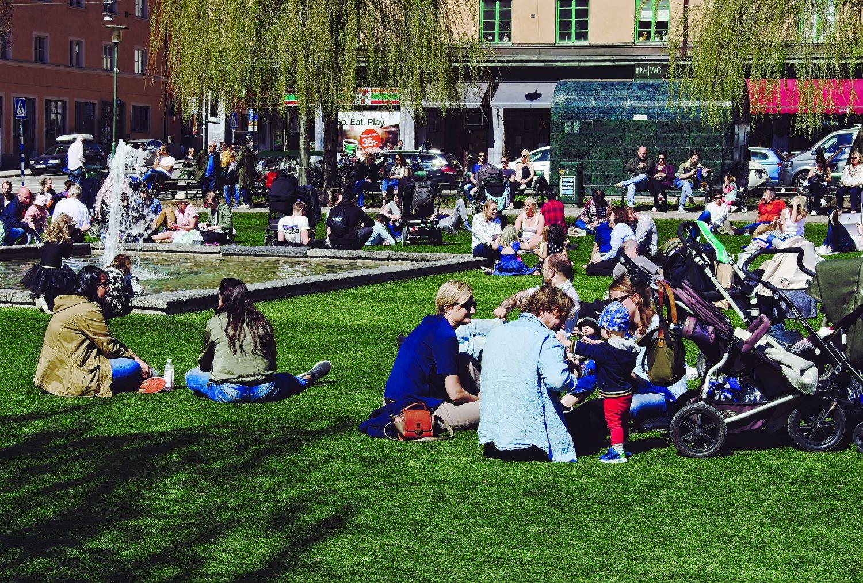 Popularny trawnik przy Nytorget (fot. Daniel Tubylewicz)