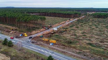 Po protestach ekologów sąd nakazał wstrzymanie karczowania drzew na terenie pod budowę gigafabryki w Brandenburgii./Fot. Patrick Pleul/dpa via AP