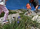 Klapki, japonki, sandały. W tym turyści chodzą po Tatrach!