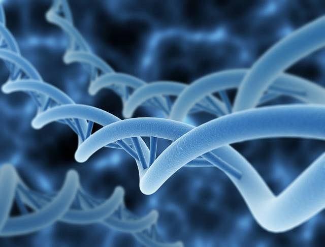 Huntington to choroba genetyczna, charakteryzująca się obumieraniem komórek układu nerwowego