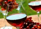 Tajemnica winiarstwa na Podkarpaciu