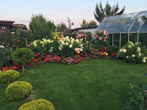 Ogród Magdaleny