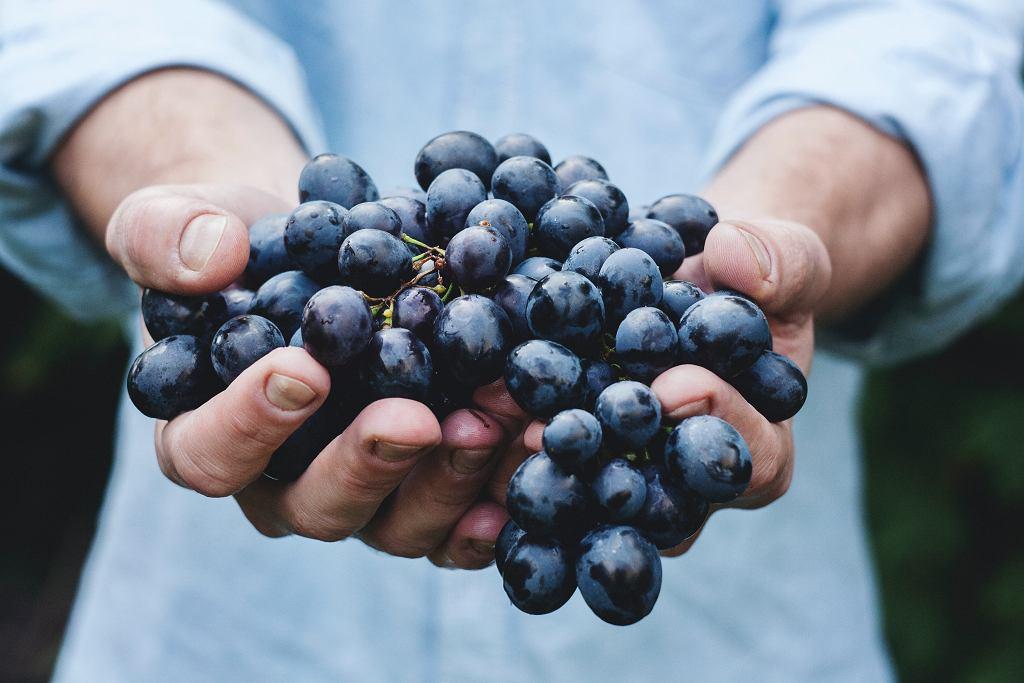 Kwercetynę znajdziemy m.in. w winogronach