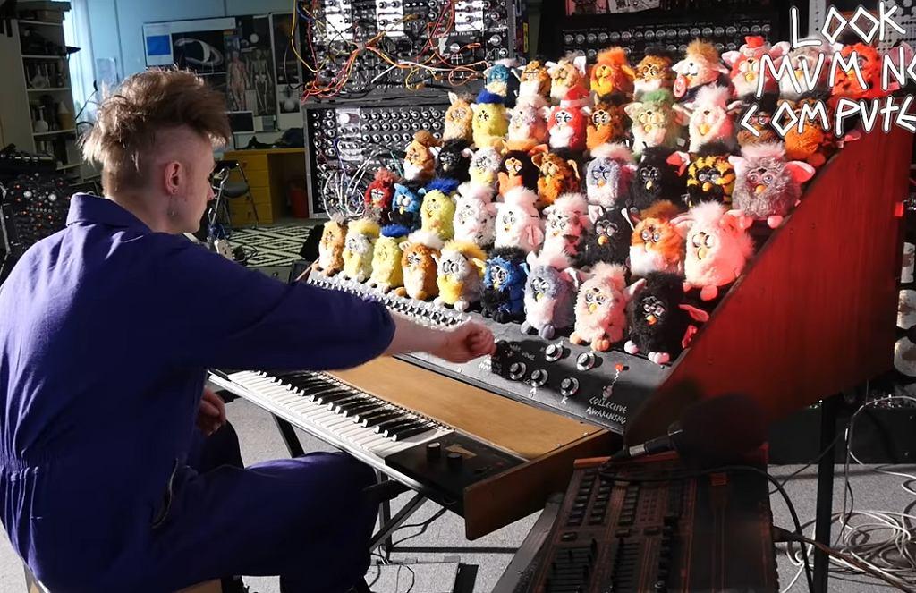 Organy Furby
