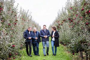 Niemcy szantażują polskich sadowników? Interwencyjny skup jabłek na nic