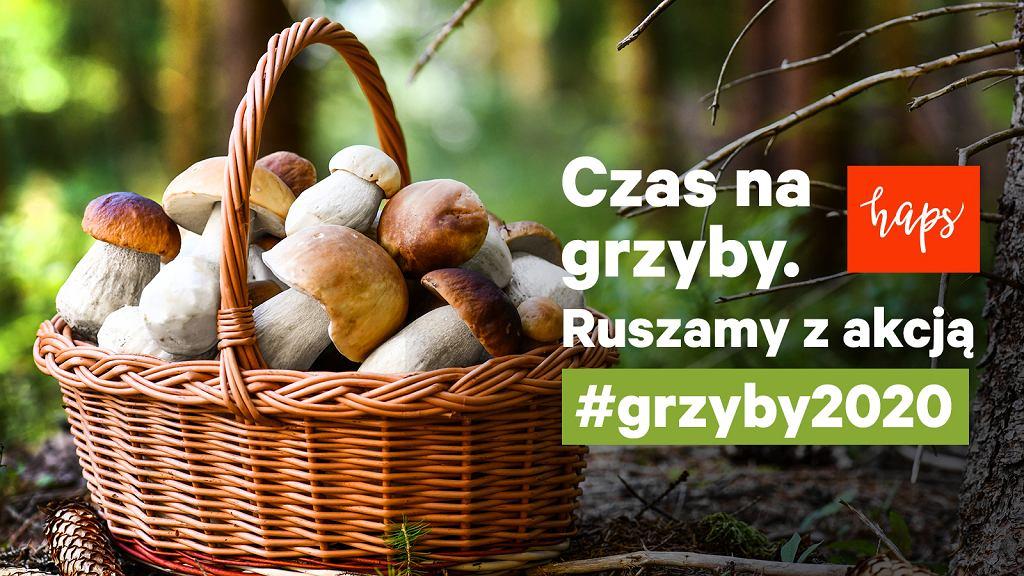 #Grzyby2020