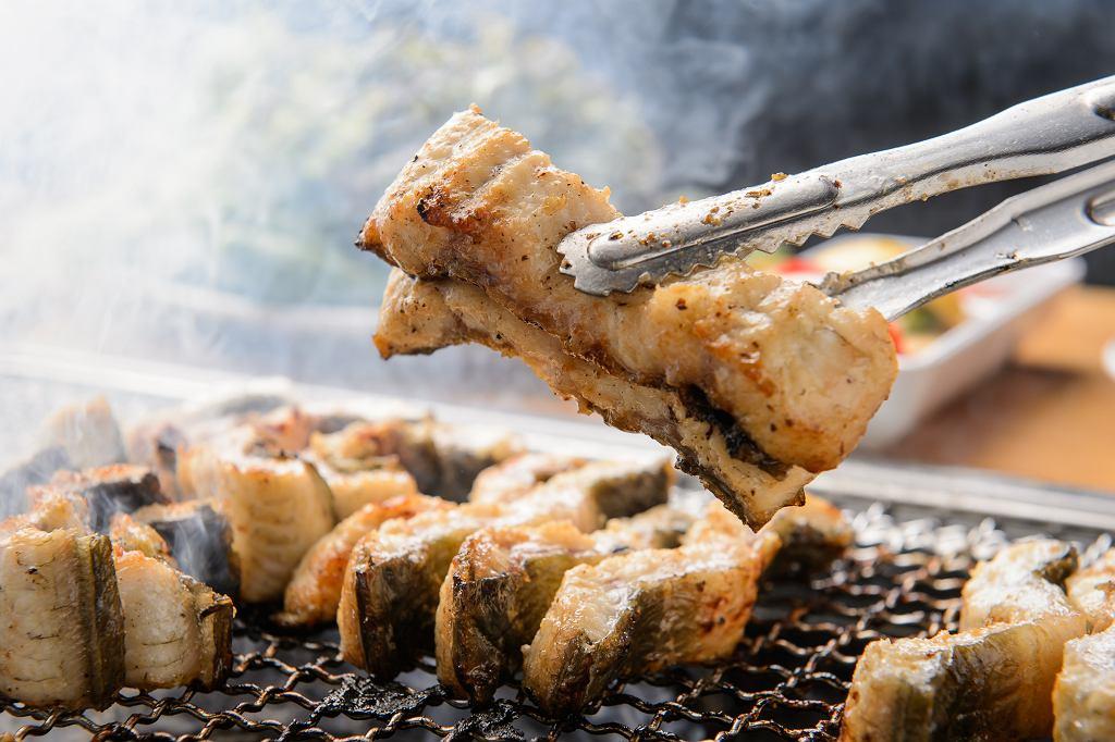 Ryba z grilla może stać sie naszą nową, tradycyjną grillową potrawą