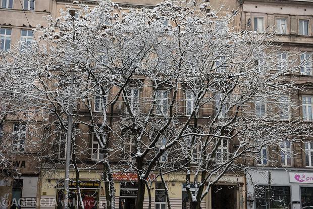 Zdjęcie numer 30 w galerii - Wrocław pod śniegiem. Zobacz zimowe zdjęcia z centrum miasta [FOTO]