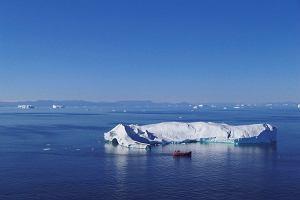 Co je się na Grenlandii, gdzie rosną tylko zioła i jagody?